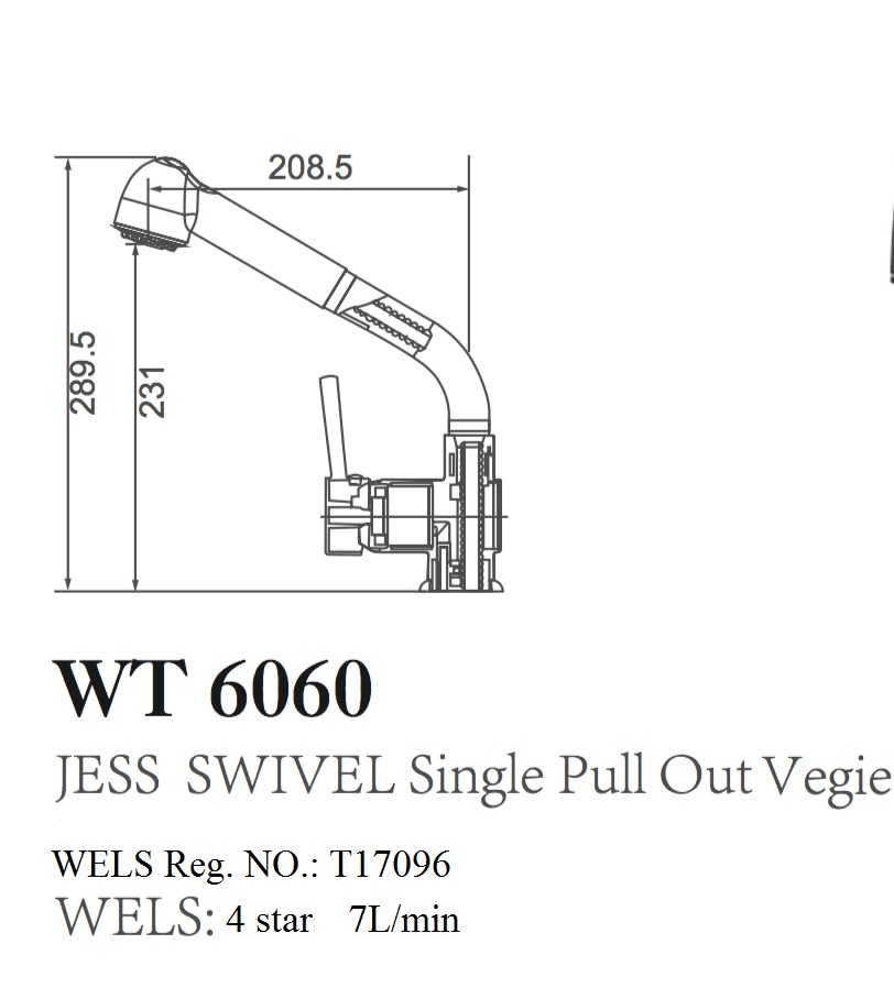WT 6060 JESS Pin Handle Pull Out Kitchen Mixer