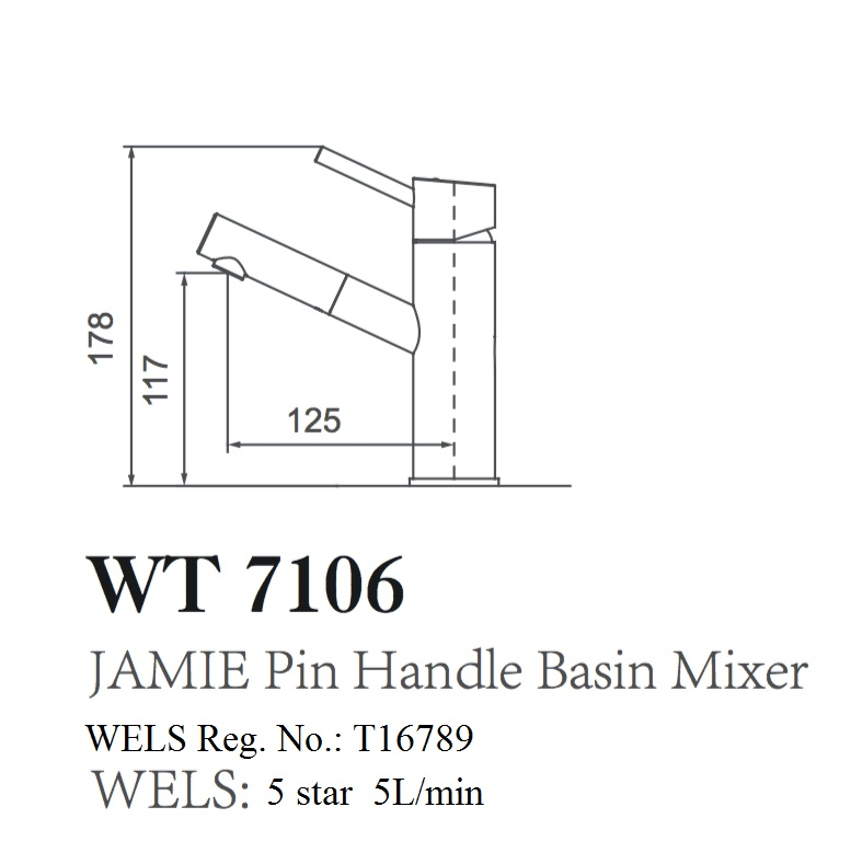 WT 7106 JAMIE Pin Handle Basin Mixer