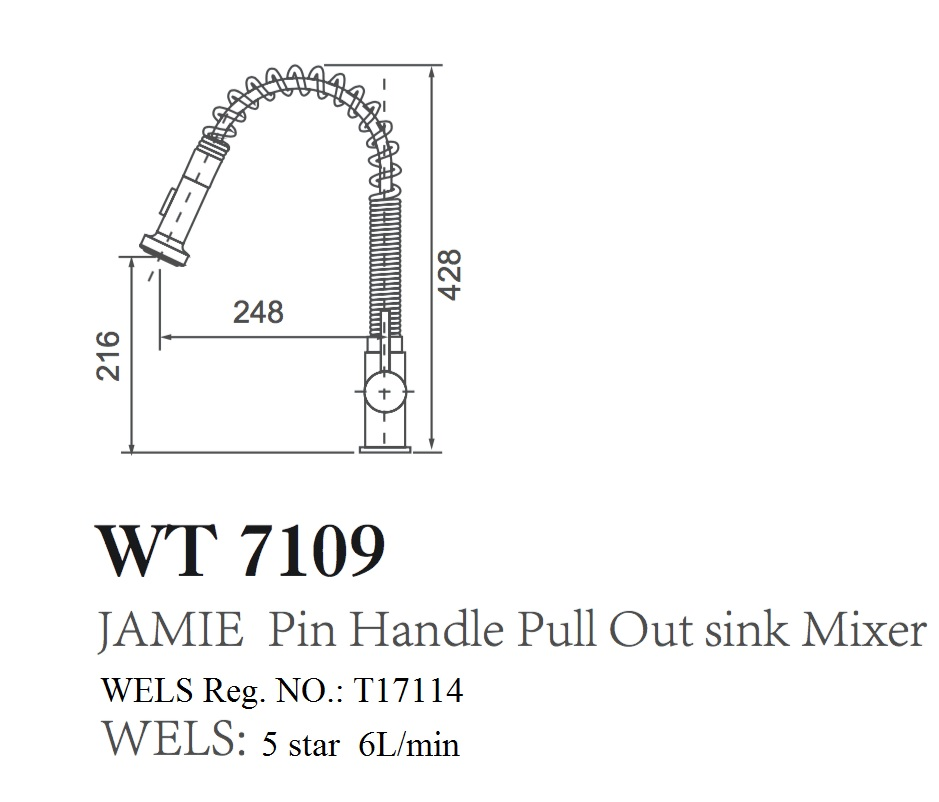 WT 7109 JAMIE Pin Handle Pull Out Kitchen Mixer