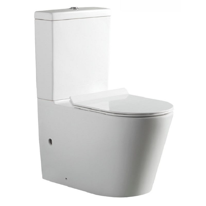 Toilet ECCO Rimless Wall Faced
